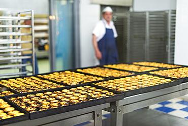 Trays of freshly baked Pasteis de Nata (custard tarts) at Pasteis de Belem in Lisbon, Portugal, Europe