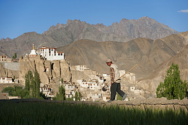 A man walks back from water channelling, with the 1000-year-old Lamayuru Monastery in the background, Ladakh, India, Asia