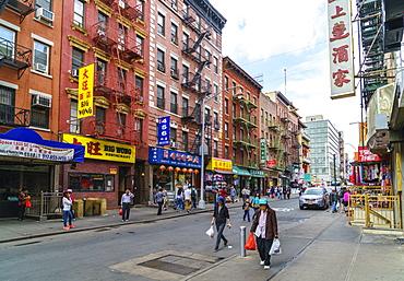Chinatown, Manhattan, New York City, United States of America, North America