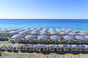 Blue and white beach parasols, Nice, Alpes-Maritimes, Cote d'Azur, Provence, French Riviera, France, Mediterranean, Europe