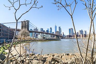 Brooklyn Bridge and Manhattan skyline seen from Brooklyn Bridge Park, Brooklyn, New York City, United States of America, North America