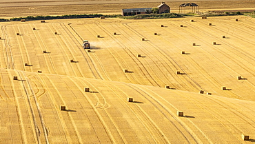 Hay bales on rolling chalk fields near the village of Fridaythorpe, on the East Yorkshire Wolds, Yorkshire, England, United Kingdom, Europe