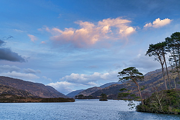 Sunset over Scots pines island, Arienskill, Loch Eilt, near Arisaig, Highland Region, Scotland, United Kingdom, Europe