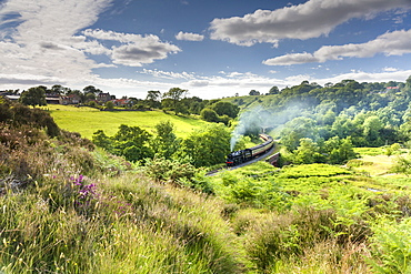 A steam locomotive at Darnholme on the North Yorkshire Railway line travelling from Whitby to Pickering, Yorkshire, England, United Kingdom, Europe