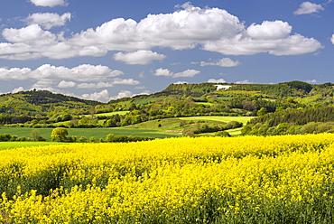 The White Horse of Kilburn, The North Yorkshire Moors, Yorkshire, England, United Kingdom, Europe