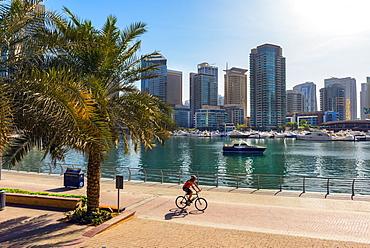 A lone cyclist rides along the waterfront, Dubai Marina, Dubai, United Arab Emirates, Middle East