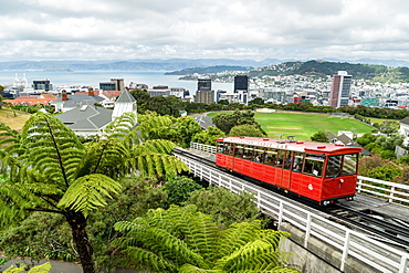 A cable car heads up the funicular railway high above Wellington, the capital city, North Island, New Zealand, Pacific