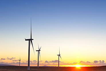 Wind turbines at sunset, Whitelee Wind Farm, Scotland, United Kingdom, Europe