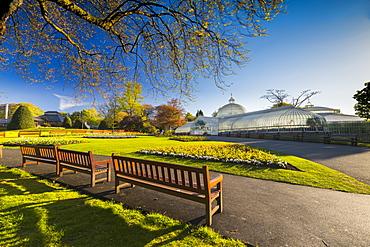 Kibble Palace, Greenhouse located at the Botanic Gardens, Glasgow, Scotland, United Kingdom, Europe
