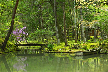 Pond with rowboat in the moss garden of Saiho-ji temple, UNESCO World Heritage Site, Kyoto, Japan, Asia