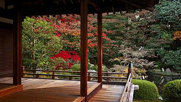 Zuishin-in temple in autumn, Kyoto, Japan, Asia