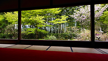 Spring time in Hosen-in Temple, Ohara valley, Kyoto, Japan, Asia
