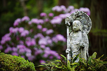 Buddhist statue, Sanzen-in Temple, Kyoto, Japan, Asia