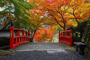 Bridge with autumn colours, Ohara valley, Kyoto, Japan, Asia