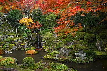 Japanese garden in autumn, Ohara valley, Kyoto, Japan, Asia