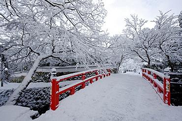 Snow-covered Japanese bridge, Ohara valley, Kyoto, Japan, Asia