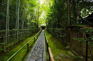 Koto-in temple narrow entrance path, Kyoto, Japan, Asia