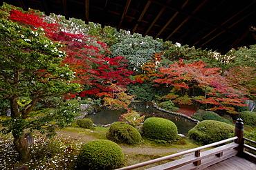 Autumn in Zuishin-in temple garden, Kyoto, Japan, Asia