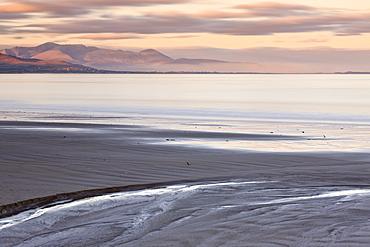 Derrymore Strand, Dingle Peninsula, County Kerry, Munster, Republic of Ireland, Europe