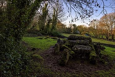 Lough Gur, Giant's Grave, County Limerick, Munster, Republic of Ireland, Europe