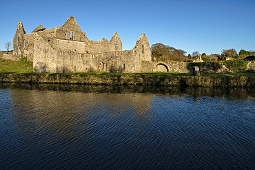 Askeaton Friary, County Limerick, Munster, Republic of Ireland, Europe