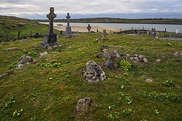 Omey Island Graveyard, Connemara, County Galway, Connacht, Republic of Ireland, Europe