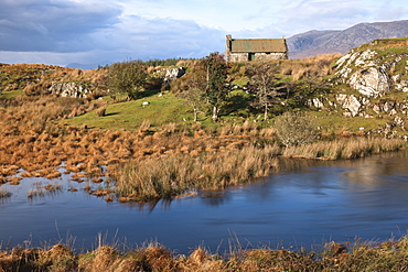 Near Maum Cross, Connemara, County Galway, Connacht, Republic of Ireland, Europe