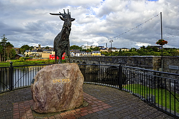 King Puck, Killorglin, County Kerry, Munster, Republic of Ireland, Europe