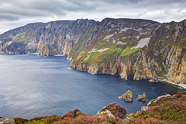 Slieve League, County Donegal, Ulster, Republic of Ireland, Europe
