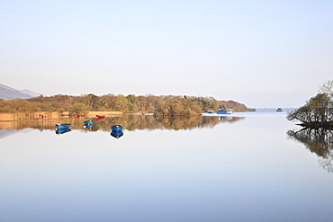 Lough Leane, Ross Bay, Killarney National Park, County Kerry, Munster, Republic of Ireland, Europe