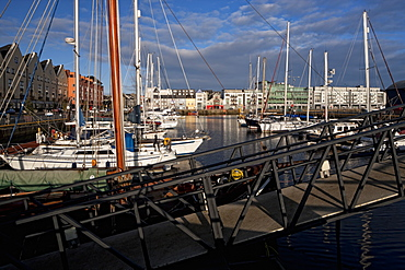 Galway Marina, Galway Docks, County Galway, Connacht, Republic of Ireland, Europe