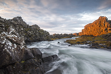 A river flows from the Oxarafoss waterfall at sunrise in Thingvellir National Park, UNESCO World Heritage Site, Iceland, Polar Regions