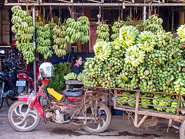 Motorbike cart carrying a heavy load of bananas, Siem Reap, Cambodia, Indochina, Southeast Asia, Asia