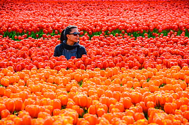 Young woman in tulip fields in Lisse, Netherlands, Europe
