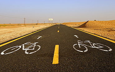 Al Qudra cycling path near Dubai, United Arab Emirates, Middle East