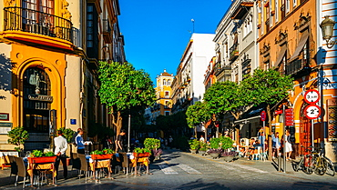 Calle Mateos Gago, a busy street with bars and restaurants in the historic centre of Seville, Andalusia, Spain, Europe