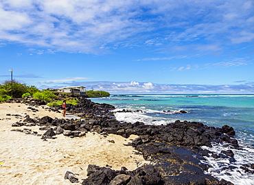Charles Darwin Station Beach, Playa de la Estacion, Puerto Ayora, Santa Cruz (Indefatigable) Island, Galapagos, UNESCO World Heritage Site, Ecuador, South America