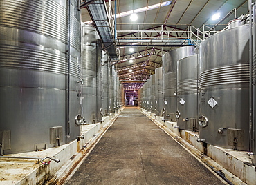 Santa Rita Winery, interior, Alto Jahuel, Buin, Santiago Metropolitan Region, Chile, South America
