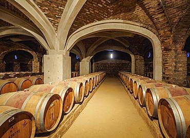 Wine cellar, Santa Rita Winery, Alto Jahuel, Buin, Santiago Metropolitan Region, Chile, South America