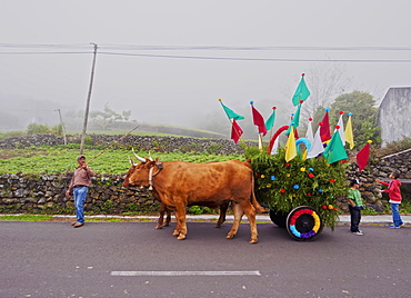Cortejo do Espirito Santo, Holy Spirit Festivity Procession, Sao Jorge Island, Azores, Portugal, Europe
