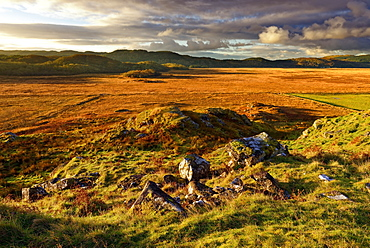 A winter view looking across Moine Mhor Nature Reserve from Dunadd Fort in the Scottish Highlands, Argyll, Scotland, United Kingdom, Europe - 1246-39