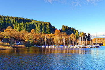 A tranquil autumn view of the Crinan Canal in The Scottish Highlands, Scotland, United Kingdom, Europe - 1246-40