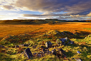 A winter view looking across Moine Mhor Nature Reserve from Dunadd Fort in the Scottish Highlands, Argyll, Scotland, United Kingdom, Europe - 1246-43