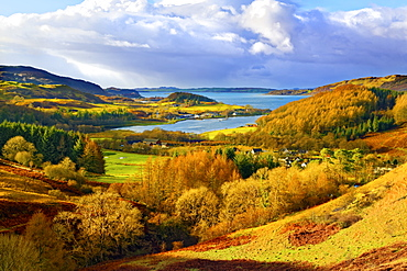 A scenic autumn view of a coastal landscape in the Scottish Highlands, looking towards Loch Melfort, Highlands, Argyll and Bute, Scotland, United Kingdom, Europe - 1246-44