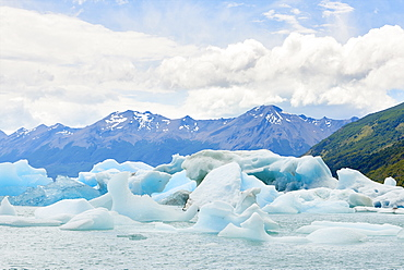 Blocks of ice float in one of the affluents of Lago Argentino, next to Perito Moreno Glacier, and wash ashore before they melt, Los Glaciares National Park, UNESCO World Heritage Site, Patagonia, Argentina, South America