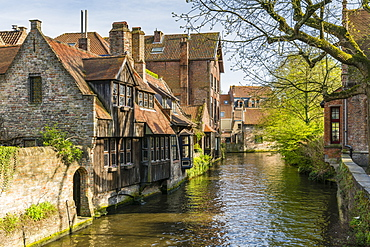 Typical houses on water canal, Bruges, West Flanders province, Flemish region, Belgium, Europe
