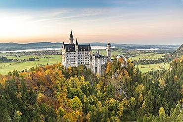 Neuschwanstein Castle surrounded by coloured fir trees at sunset, Schwangau, Schwaben, Bavaria, Germany, Europe