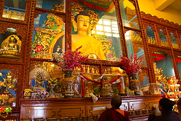 Buddha of the Karmapa temple, the Gyuto Tantric Monastery, Dharamsala, Himachal Pradesh, India, Asia