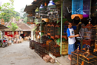 The bird and flower markets of Malang, Malang, East Java, Indonesia, Southeast Asia, Asia