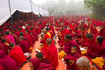 Buddhist monks of the Great Sakya Monlam prayer meeting at Buddha's birthplace, Lumbini, Nepal, Asia